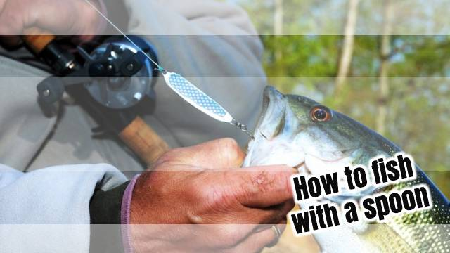 How to fish with a spoon