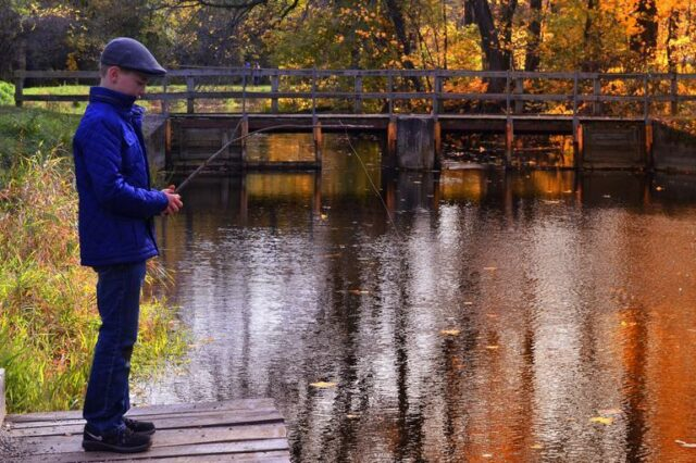 Autumn fishing, the best species to fish for at this time of season