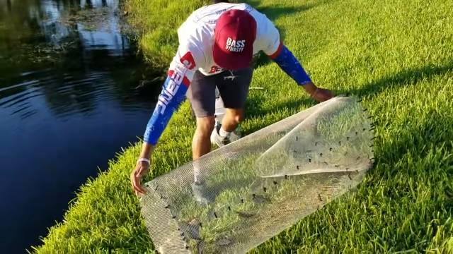 Fishing traps, What types are there and how to make a trap for artisanal fish?