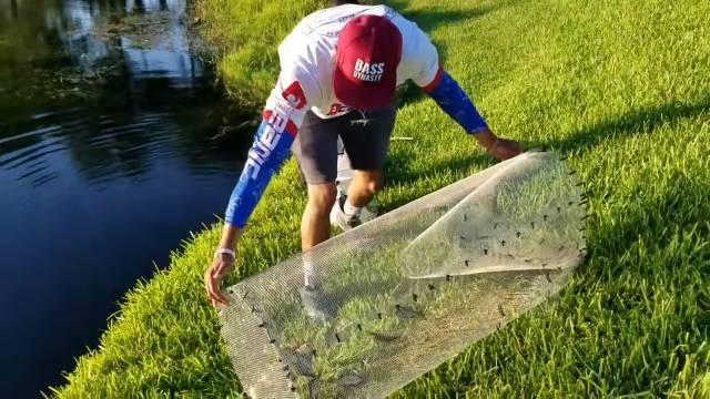 commercial fish traps