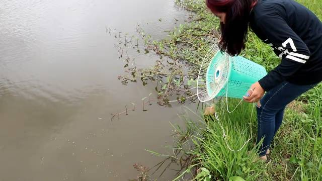 homemade fish traps
